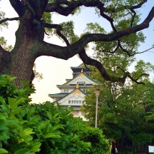 Osaka Castle peering from the trees