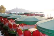 Lotus flower boats at Behai Park.
