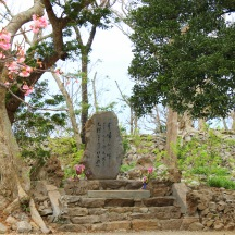 Loved this peaceful little shrine amidst the blossoms. So zen!