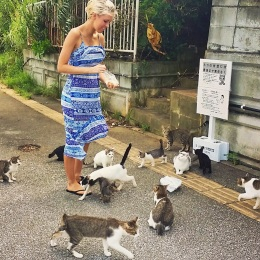 Crazy Cat Lady of Uken Beach