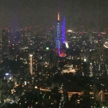 The view from Mori Tower... it was a rainy, overcast night, but the view was still striking!