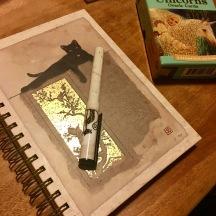 My journal, featuring Koru :)