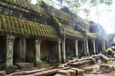 Tree roots embracing the temple