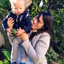 Avocado picking with the junior Lockerbys